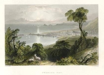 Fabians Bay Swansea